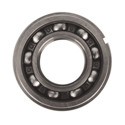 Manual Trans Input Shaft Bearings