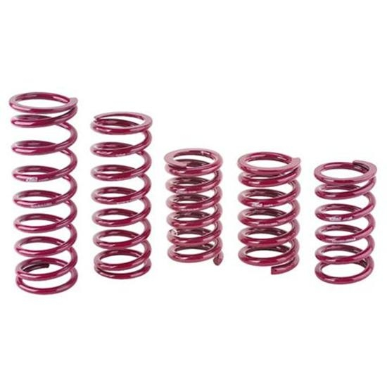 Eibach Rear Racing Springs, 5 x 13 Inch
