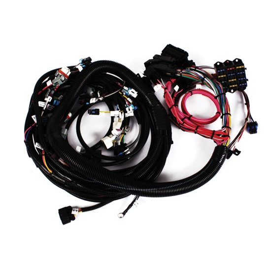 Painless Wiring Harness For Ls Swap : Speedway  ls engine wiring harness