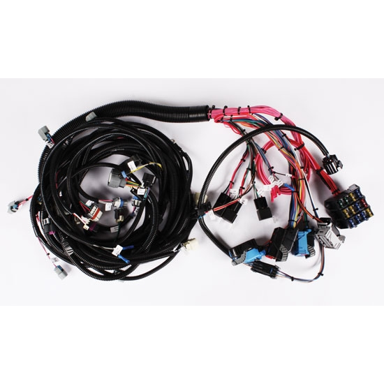 Speedway 2005 4l65e Wiring Harness