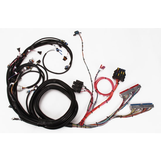 Speedway  ls engine wiring harness extended