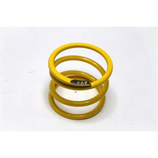 Garage Sale - AFCO 26300-2 Modified 6th Coil Spring, 5 X 4 Inch, 300 Rate