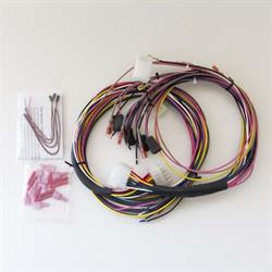 Auto Meter 2198 Universal Gauge Wire Harness with LED Indicators