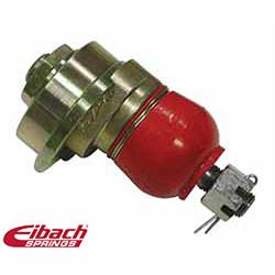 Eibach 5.67170K Pro-Alignment Camber Bolt Kit, Dodge