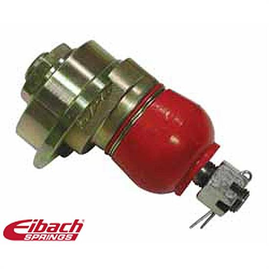 Eibach 5.67180K Pro-Alignment Camber Ball Joint Kit, Dodge