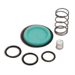 Quick Fuel 30-7304QFT 2-Port & 4-Port Pressure Regulator Rebuild Kit
