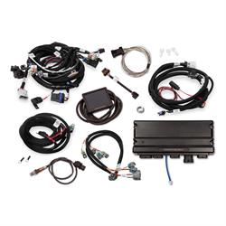 Chevy LS V8, Wiring Harness and Components - Free Shipping