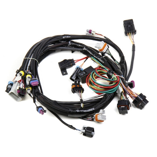 Holley 558-102 LS1 Main Harness for HP EFI & Dominator EFI