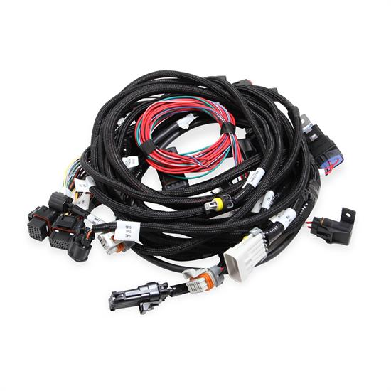 Holley EFI 558-114 Ford Coyote Main Harness w/Smart Coils on ford alternator connectors, ford wiring connectors, auto wiring plug connectors, ford coil connectors, different types of wire connectors, ford radio connectors, ignition wire connectors, ford terminal connectors, ford wire terminals,