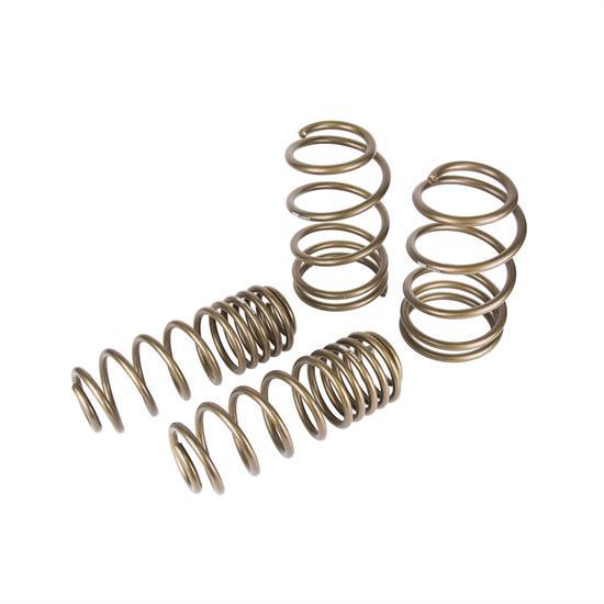 Hurst 6130010 Spring Kit