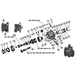 Bert Transmission SG-1063 Magnetic Drain Plug, 1/4 NPT