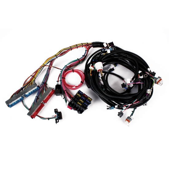 Sdway 1999-2003 Vortec V8 Wiring Harness on radio harness, oxygen sensor extension harness, suspension harness, pony harness, amp bypass harness, battery harness, electrical harness, maxi-seal harness, obd0 to obd1 conversion harness, cable harness, dog harness, safety harness, alpine stereo harness, engine harness, fall protection harness, nakamichi harness, pet harness,
