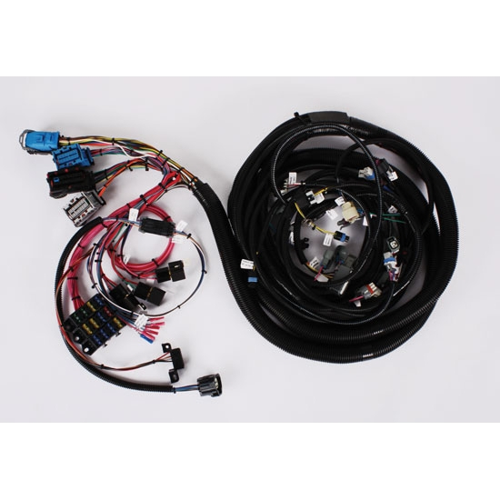 Speedway 2005-2006 LS2/4L65E Wiring Harness, Extended