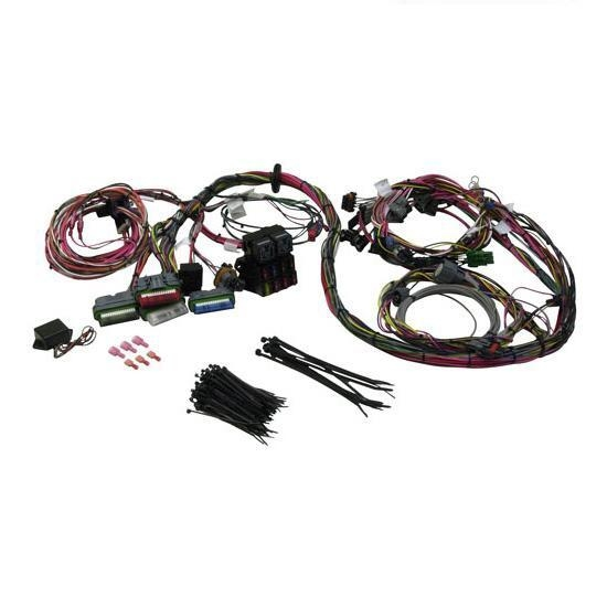 Painless Wiring 60502 1992-1997 GM LT1 Engine Harness on toyota wiring diagrams color code, wiring harness transmission, wiring harness connectors, safety harness color code, relay harness color code, trailer wire harness color code,
