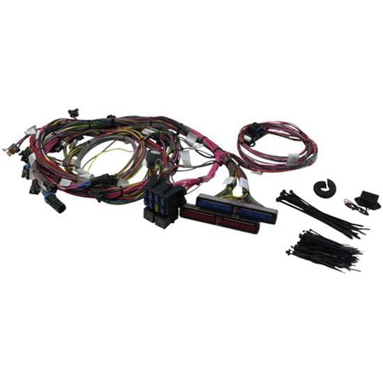 Painless Wiring 60508 1999-2002 GM LS1 Engine Harness on ls1 power steering pump, ls1 swap harness, ls1 fuel filter, ls1 oil cooler, ls1 exhaust, ls1 ignition wire terminals, 68 camaro ls1 wire harness, ls1 pulley, stock ls1 harness, ls1 fuel rail, ls1 engine harness, ls1 driveshaft, ls1 fuel pressure regulator, ls1 fuel line, ls1 wheels, 2000 ls1 harness, ls1 brakes, custom ls1 harness, ls1 carburetor,