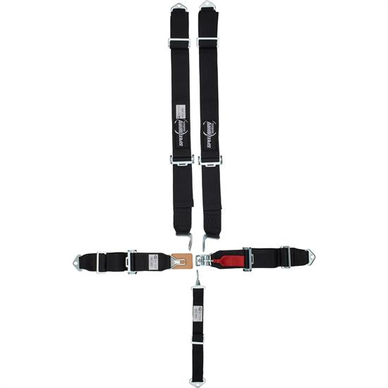 Speedway 5 Point Harness Seat Belt Combo, Latch and Link, Pull Down