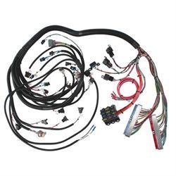 speedway 1994 1997 lt1 engine wiring harness. Black Bedroom Furniture Sets. Home Design Ideas