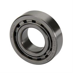 DMI RRC-1310 XR-1 Bulldog Rearend Small Pinion Bearing