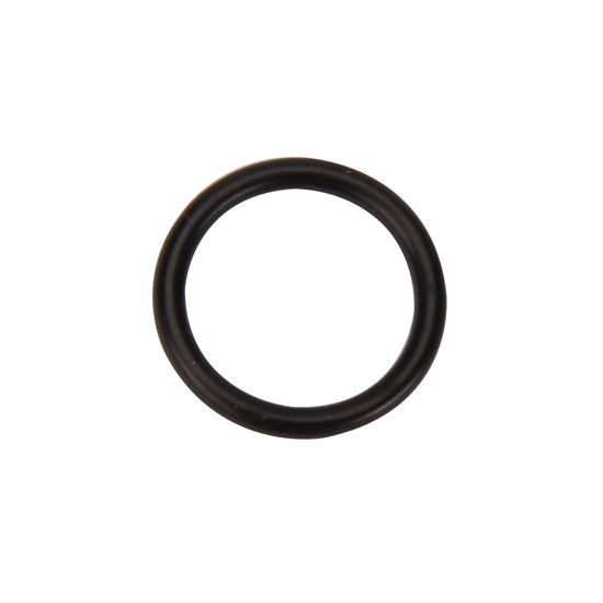 DMI O-Ring for Fill Level Plug for Bulldog XR-1 Rear End