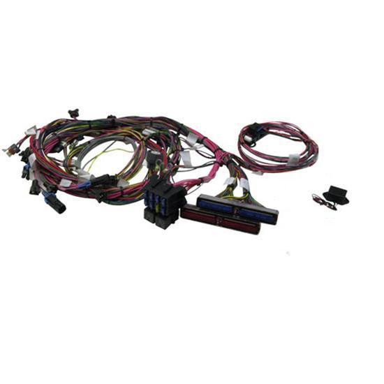 garage sale painless wiring 60508 1999 2002 gm ls1 engine harness rh speedwaymotors com